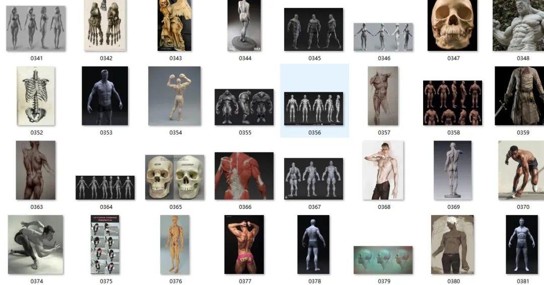 你在找人体解剖参考图??
